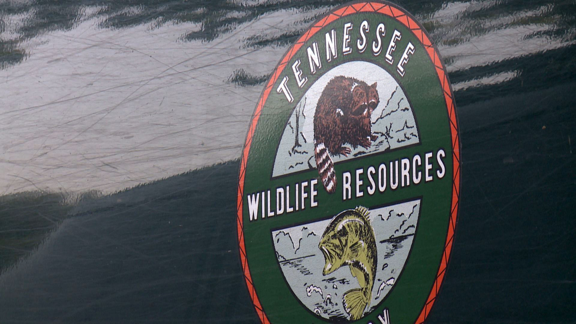 Tennessee hunting and fishing licenses go on sale saturday for Tn fishing license online