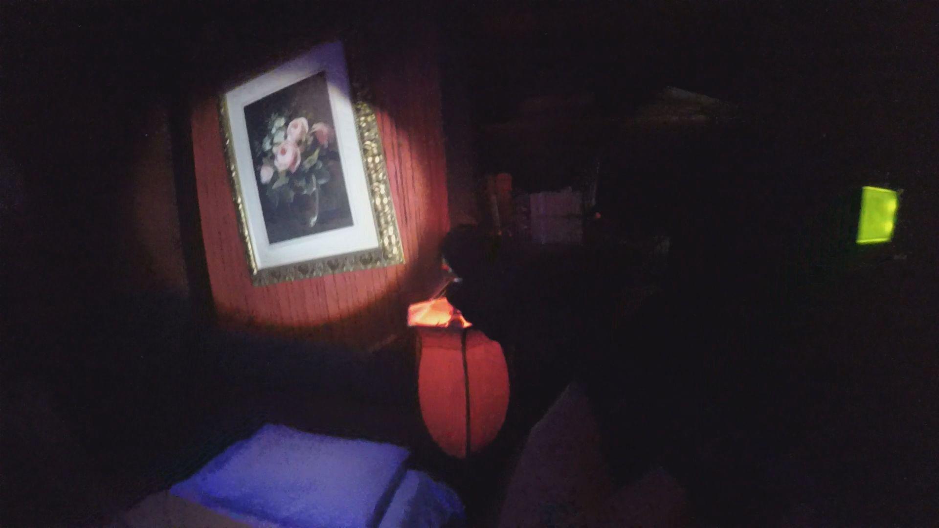 Spotlight Escape Room Laser